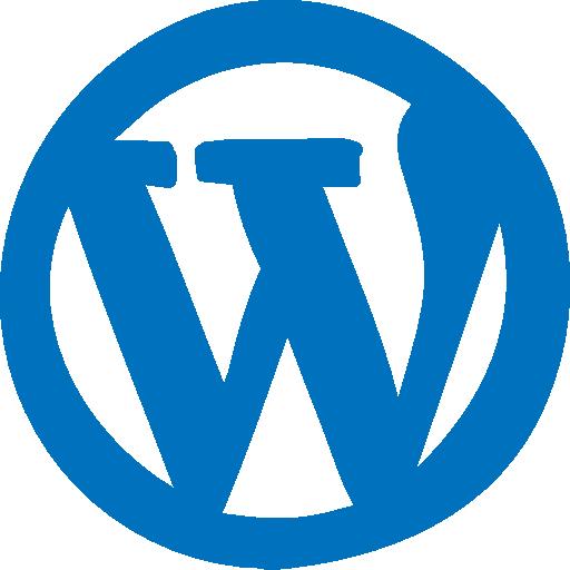 WordPress Theme Development